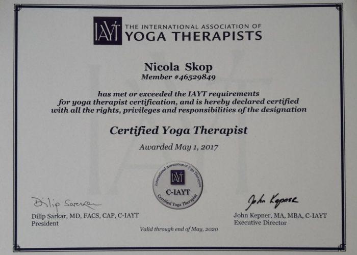 Yoga Therapie Ausbildung 2017
